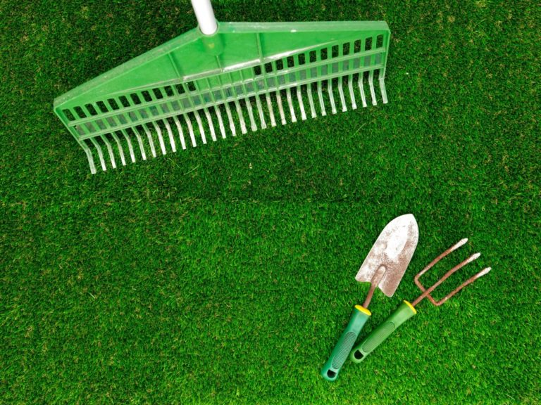 gardening tools laid out on an artificial grass